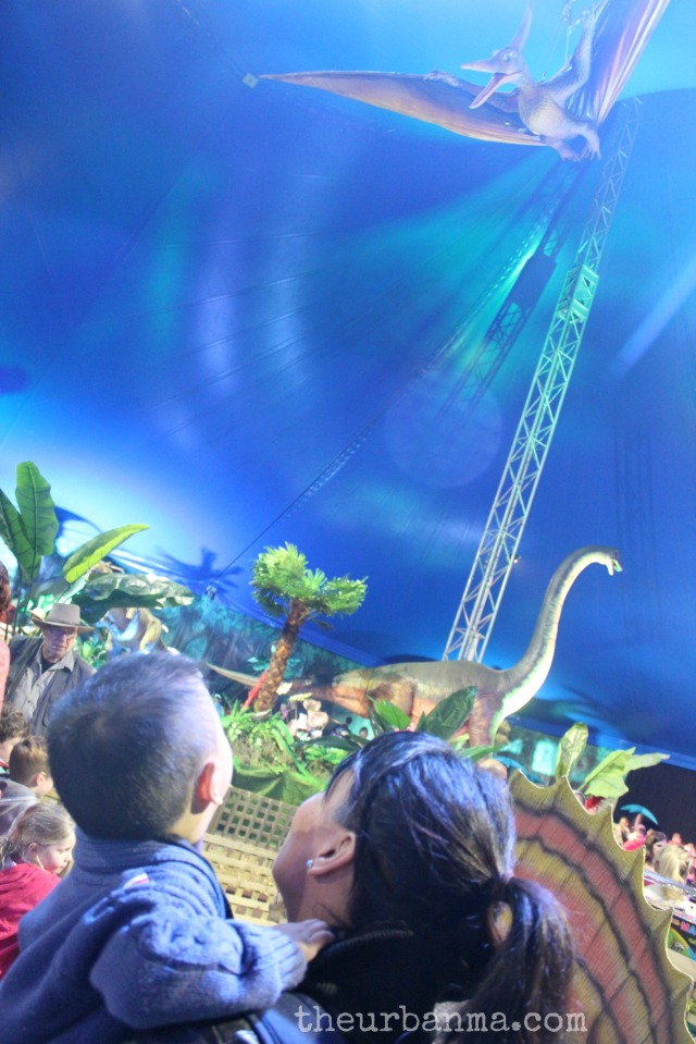 Dinosaur high