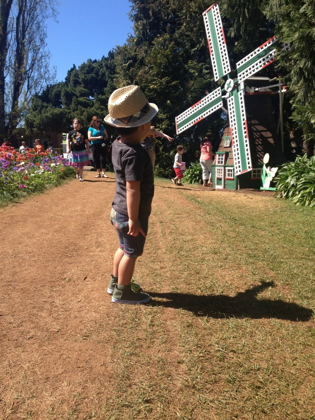 Kids Day out Tulip Festival
